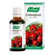 Crategisan (Φυτικό αντιυπερτασικό), 50 ml, Avogel