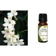 Αιθέριο Έλαιο Γιασεμί (Jasmin) ( 5% σε Χοχόμπα), 10 ml