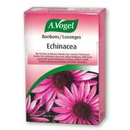 Echinacea Bonbons, 30 gr, Avogel