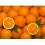 Πορτοκάλια Βαλέντσια, Λακωνίας