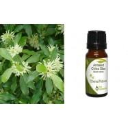 Αιθέριο Έλαιο Γλυκάνισος (Aniseed) 10 ml