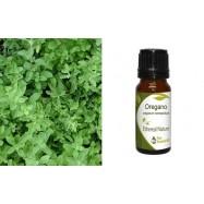 Αιθέριο Έλαιο Ρίγανης Μαρόκου (oregano), 10 ml, Ethereal Nature