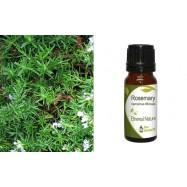 Αιθέριο Έλαιο Δενδρολίβανου (Rosemary) 10 ml