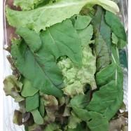 Μείγμα βιολογικής σαλάτας...