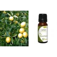 Αιθέριο Έλαιο Λεμόνι (Lemon) 10 ml
