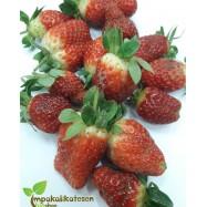 Φράουλες βιολογικές, φρέσκες