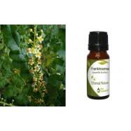 Αιθέριο Έλαιο Λιβάνι (Frankincense) 10 ml