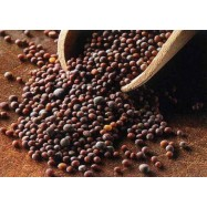 Μουστάρδα μαύρη σπόροι, 100 γρ., Χύμα