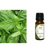 Αιθέριο Έλαιο Βασιλικού (Basil) 10 ml