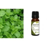 Αιθέριο Έλαιο Δυόσμου (Spearmint) 10 ml