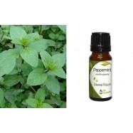 Αιθέριο Έλαιο Μέντας (Peppermint) 10 ml
