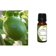Αιθέριο Έλαιο Μοσχολέμονου (Lime) 10 ml