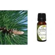 Αιθέριο Έλαιο Πεύκου (Pine) 10 ml