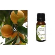 Αιθέριο Έλαιο Πορτοκάλι (Orange) 10 ml