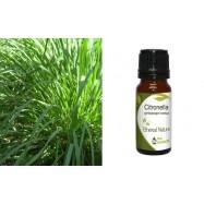 Αιθέριο Έλαιο Σιτρονέλας (Citronella) 10 ml