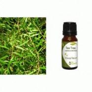 Αιθέριο Έλαιο Τεϊόδεντρο (Tea Tree) 10 ml
