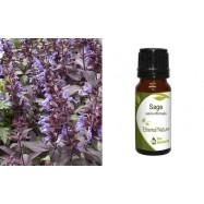 Αιθέριο Έλαιο Φασκόμηλο (Sage) 10 ml