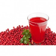 Κράνμπερις (Cranberries) αποξηραμένα,BIO, Raw,1 κιλό